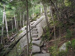 Steps on the Fishing Jimmy trail