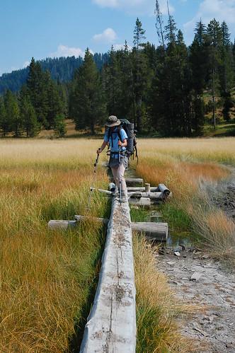 Yellowstone NP trip