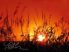 Sunset on The Beacon (JLC Photography Spokane,WA) Tags: park sunset sun washington spokane state beacon minnehaha