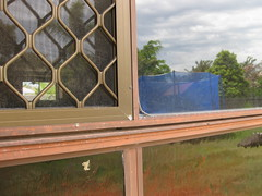 before aluminium window painting