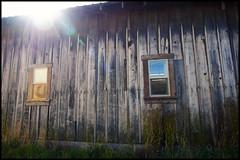 The sun rises and shines (Eric Flexyourhead (YVR catch-up mode!)) Tags: wood old usa building texture sunshine wooden washington grain lensflare edison skagitcounty zd 918mm olympusep1 panasonicdmwma1