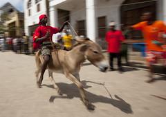 Donkey race in Lamu - Kenya (Eric Lafforgue) Tags: africa street festival race speed island kenya culture donkey unescoworldheritagesite afrika tradition lamu ane swahili afrique eastafrica qunia lafforgue  qunia   111982  kea   tradingroute a