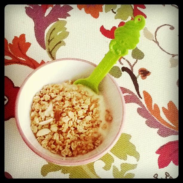 yoghurt w/ granola yum yum