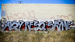 Aloy, Resq & Sayme (Say Cheese & Die) Tags: ska horns want brook msk ftl 246 clepto trigz resq aloy eyons sayme