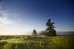 Image result for alberta scenery