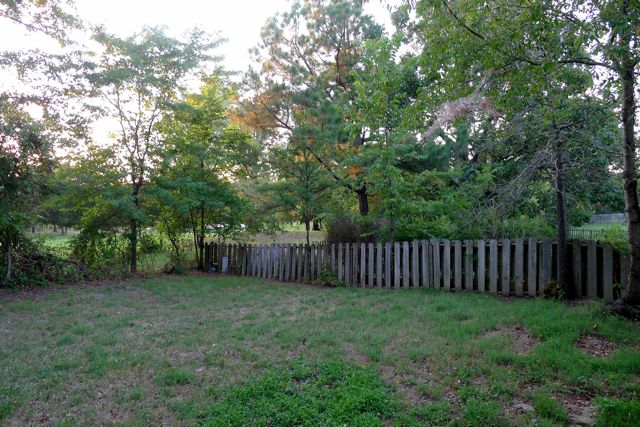 Cleared Wood Fence