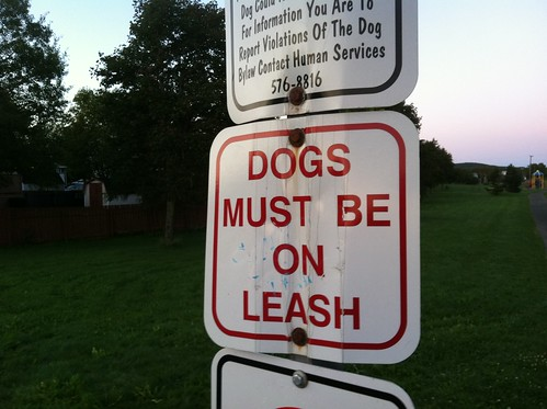 Dogs Must Be On Leash