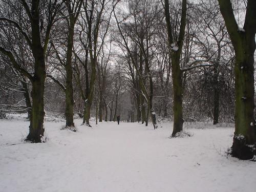 Neve!!! (46)