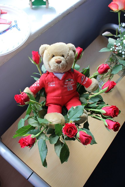 Lingy the Bears flower tribute