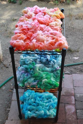 Fleece to Yarn Project