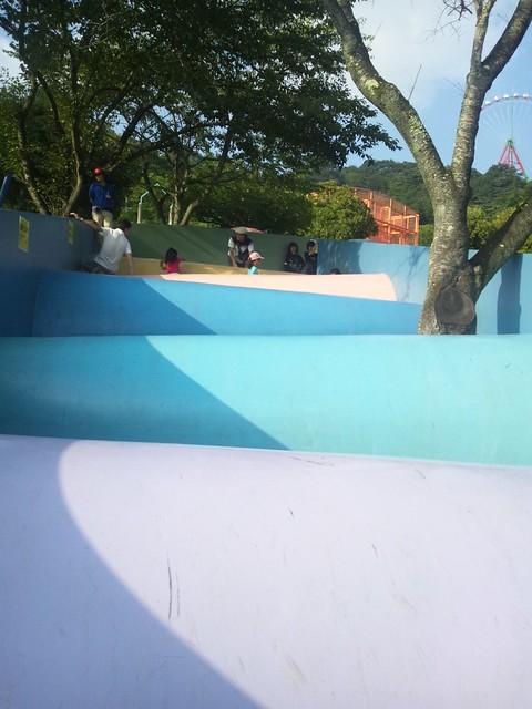 ピカソのタマゴのスリップクラウンの写真