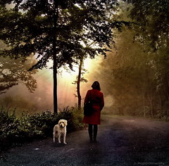 Waiting Woman with Dog (h.koppdelaney) Tags: life trees light red woman dog sun colour rot art digital photoshop gold waiting venus friendship symbol miracle glory magic picture philosophy direction hund silence future thinking frau metaphor now past parkplatz wald beams psyche symbolism psychology archetype morgensonne warten wartende erwartung idream koppdelaney