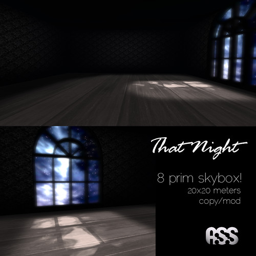 A:S:S - That night