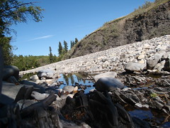 Highwood River Bed (Mr. Happy Face - Peace :)) Tags: canada nature water beautiful landscape kananaskis stream country explore alberta