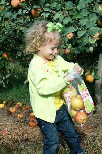 Autumns-bag
