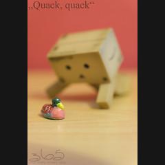 Quack, quack (Oliver Totzke) Tags: macro ex toy duck dc nikon sigma days geocache 365 f28 danbo 1850mm hsm revoltech danboard d7000