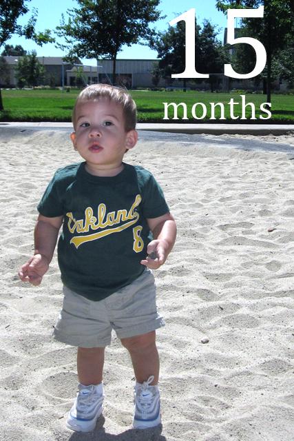 fifteen month portrait