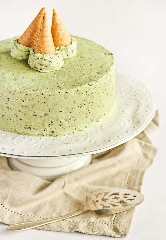 mint_choc_chip_cake-7