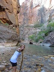 DSC00173 (johnspoelder) Tags: zion narrows