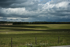 West England countryside (Stonehenge, the other side) (Anny Turolla) Tags: uk holiday clouds nikon nuvole sheep stonehenge greenfield vacanze westengland d3000 pratoverde