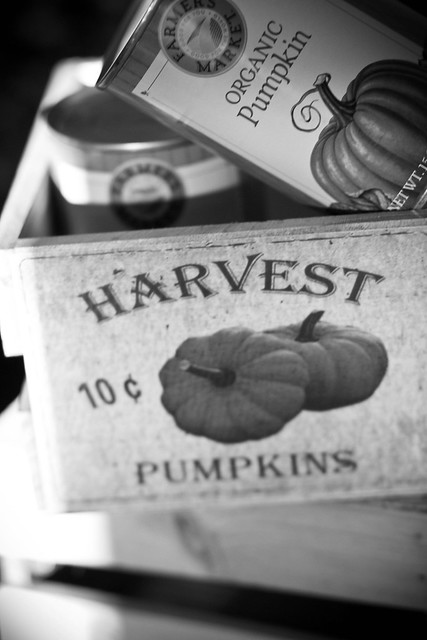 Post image for B&W Wordless Wednesday: Pumpkin Season
