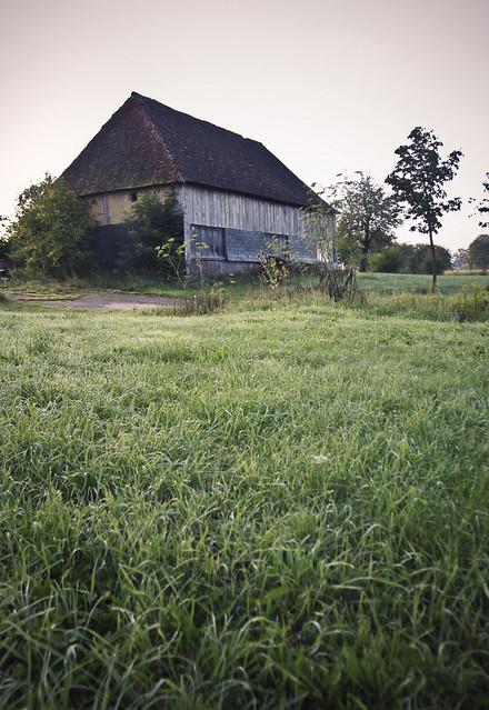 Le Château - gardens - 416