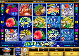 What A Hoot slot game online review