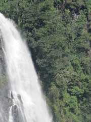 IMG_0176 (Nelson Luiz Wendel) Tags: brazil brasil mar waterfall rainforest do wasserfall air maji talon tropical slap serra foss juga cascade floresta cachoeira ya terjun ecoturismo   cascada joinville  cascata vesiputous eas waterval  rhaeadr fervenza vattenfall vodopd elale wodospad  urjauzia vandfald itapocu   vodopad nc vzess thc ecossistema krioklys maporomoko mata atlntica denskritums lal   ujvar    regenvaldt regenwaldt    catarracta  kaskad