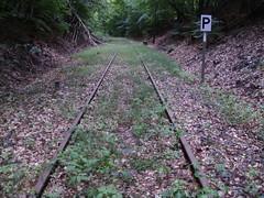 P8100091 (el_visigodo) Tags: railroad germany deutschland wiesbaden hessen railway alemania taunus hesse ferrocarril 2011 aartalbahn elvisigodo nassauischentouristikbahn