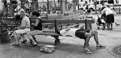 CADA CUAL EN LO SUYO!! (TO EACH HIS OWN!!) (Samy Collazo) Tags: bw bench puertorico banco pb bn sanjuan plazadearmas yashicaelectro35gsn blackwhitephotos samycollazo