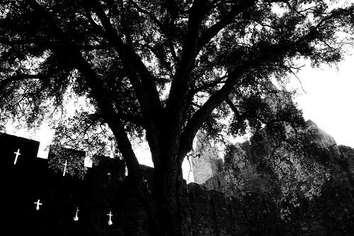 o Castelo de Stª Maria da Feira - Castle of Stª Maria da Feira by @uroraboreal