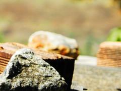 Tijolos e Pedras (Salatiel Lopes) Tags: folhas e pedras coqueiro pregos tijolos folhassecas