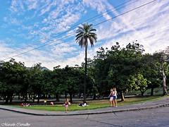 Quinta da Boa Vista_Rio de Janeiro (FM Carvalho) Tags: brazil rio brasil riodejaneiro landscape sony cybershot paisagem boa da vista quinta sonycybershot brsil quintadaboavista hx5v sonyhx5v