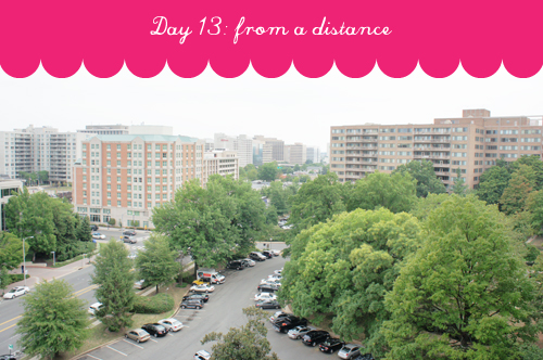 photo_challenge_day013