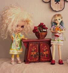 Mo really wants to play with Martsen's dolly (fashiondollcrazy) Tags: march ginger outfit doll dress mo dresses tiny bjd blythe 16 resin prima dolly rs bbb yosd outfis bobobie resinsoul dollysnatchers faceupmaasje