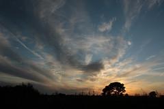 Weerfoto maandag 15 augustus (Omroep Brabant) Tags: foto wind omroep fotos zon brabant regen weer omroepbrabant seizoenen brabantse weerfotos weerfoto wwwomroepbrabantnl brabantseseizoenen