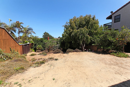 10 - Spacious backyard with lots of potential