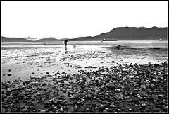 Spanish Banks West B&W (Mark Faviell Photos) Tags: summer bw west english beach vancouver bay bc tide low july spanish kitsilano banks