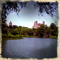 Central Park: New York Summer 2011
