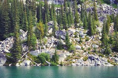 Green (T. VOLK) Tags: trees lake green beautiful shore colchuck