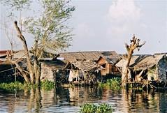 villages flottants sur le Tonl Sap (Micheline Canal) Tags: cambodge asie navigation villageflottantmaison