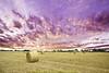 British Countryside (Muzammil (Moz)) Tags: uk countryside moz colorphotoaward muzammilhussain heystacks horrwich