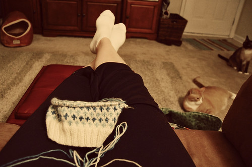 Friday Night Knitting by raverlygirl