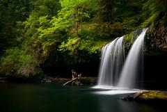 A Time for Repose (Benjamin Postlewait) Tags: green oregon waterfall nikon waterfalls agd strawberryfanta scottsmills buttecreekfalls nikond80 upperbuttecreekfalls roywasexcitedtofindcheetosgrowinginthewild