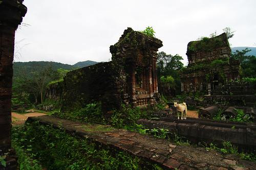 Ruins of Mỹ Sơn & Lost dog by Gregor  Samsa