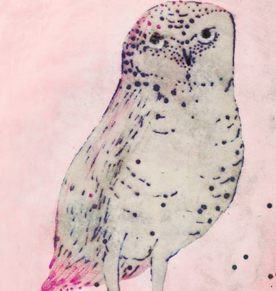 hadley hutton spotted owl print