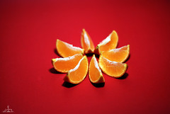 slice of orange (  l alshoog36re  IN USA) Tags: food orange color fruit studio amazing nikon softbox doha qatar      d80           alshhog36re