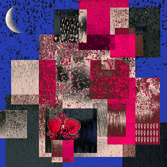 Abstract Collage with Orchid and Moon (bethrosengard) Tags: photomanipulation photoart digitallyenhanced bethrosengard