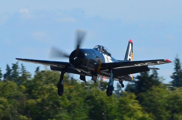 HFF Grumman F8F-2 Bearcat  NX800H