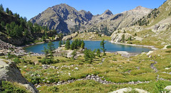 Lac de Trcolpas (Mathieu Pborde) Tags: wild mountain france green nature montagne alpes europe hiking rando lac vert ctedazur paca mercantour alpesmaritimes vsubie mlze provencealpesctedazur trcolpas cougourde randonner boron